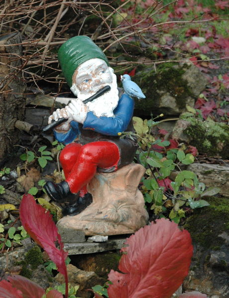 This garden gnome could be watching your every move as it plays the song flute. Image by Ekko.